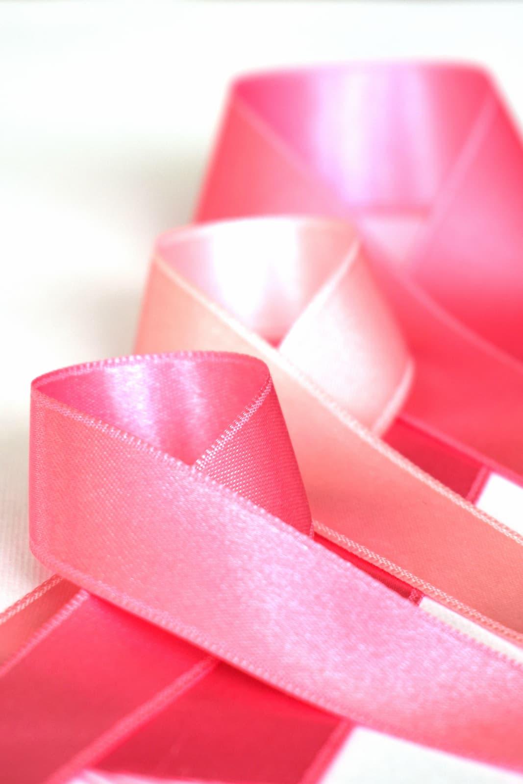 Pink Ribbons Inc, 2011